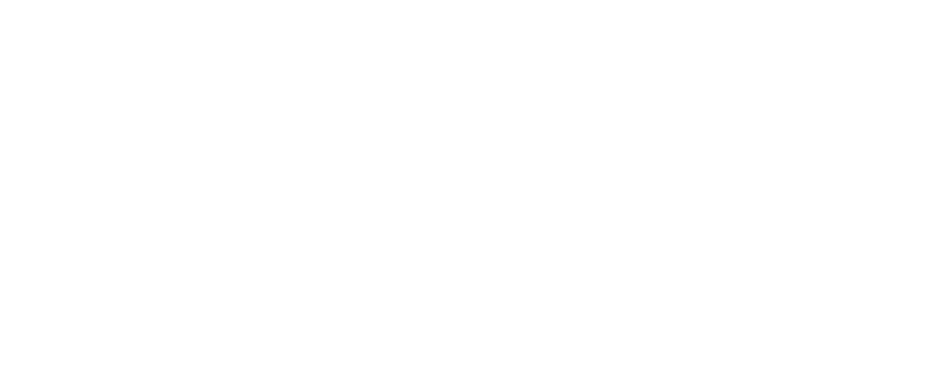 Swiss Startup Association Big